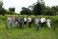 Full Day Mount Tamborine Winery Tour from Brisbane