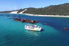 Moreton Bay Marine Park Dolphin Cruise Including Lunch