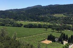 Private Wine Tour of Napa and Sonoma
