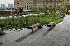Imagen Recorrido a pie por High Line Park de Nueva York