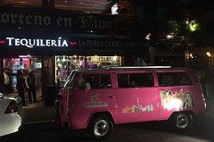 City tours,Gastronomy,Night,Theme tours,Historical & Cultural tours,Others about gastronomy,Nightlife,Mexico Tour