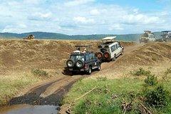 Simba Safaris -Kenya