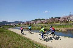 Ver la ciudad,Ver la ciudad,Salir de la ciudad,Visitas en bici,Excursiones de un día,Tour por Kioto