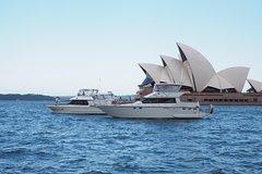Imagen Small-Group Sydney Harbour Morning Tea Cruise