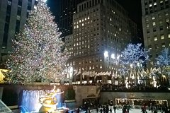 New York Holiday Lights Tour