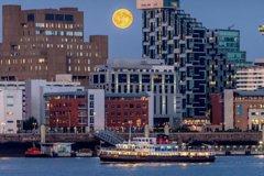 City tours,Activities,Water activities,Night tours,Specials,
