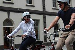 Imagen 2.5-Hour Auckland Neighborhoods Electric Bike Small-Group Tour