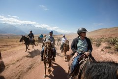 Imagen Paseo a caballo desde Cuzco