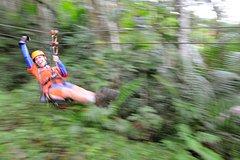 Activities,Adventure activities,Adrenalin rush,Zipline Adventure