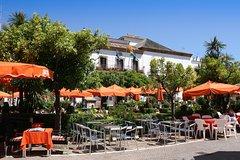 Imagen Malaga Shore Excursion: Malaga- Marbella and Puerto Banus Private Tour