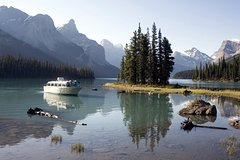 Jasper Canadian Rockies 5.5-Hour Jasper Wildlife and Waterfalls Tour with Maligne Lake Cruise from Jasper 5400P5