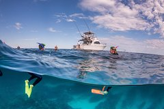 Imagen Exclusive Ningaloo Adventure Charter from Exmouth