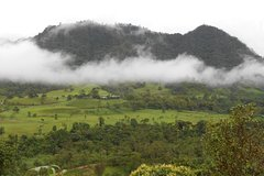 Imagen Private Tour to Mindo Cloud Forest