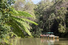 Imagen Kuranda Day Trip from Cairns by Scenic Railway and Skyrail Including Army Duck Rainforest Tour
