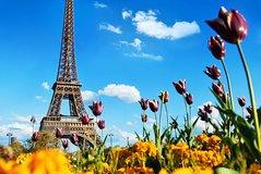 Ver la ciudad,City tours,Salir de la ciudad,Excursions,Salir de la ciudad,Excursions,Tours de un día completo,Full-day tours,Excursiones de un día,Full-day excursions,Excursiones de un día,Full-day excursions,Excursión a París,Excursion to Paris