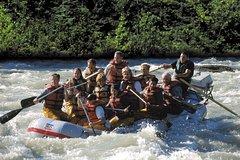 Activities,Water activities,Excursion to Mendenhall Glacier