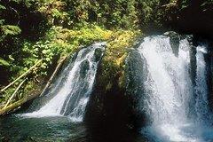 City tours,Activities,Theme tours,Historical & Cultural tours,Adventure activities,Nature excursions,