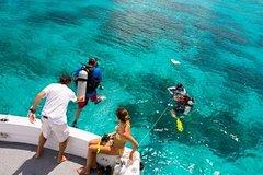 Imagen Bermuda 2-Tank Certified Scuba Dive