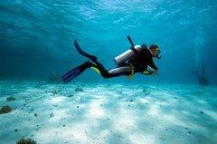 Imagen  Bermuda Shore Excursion: 2-Tank Certified Scuba Dive