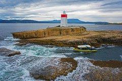Imagen Hobart Sightseeing Cruise including Iron Pot Lighthouse