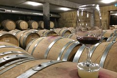 Imagen Northern Cotes du Rhone Discovery - From Lyon in small group tours