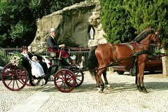 Horse Carriage for Wedding