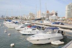 Imagen Visita turística a la ciudad de Punta del Este