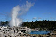 Imagen Shore Excursion Port Tauranga to Rotorua