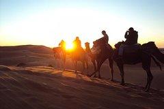 Salir de la ciudad,Excursiones de más de un día,Excursion desierto Marrakech,Palmeral de Marrakech,Paseo en camello