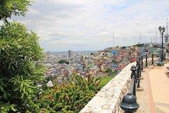 Imagen Recorrido privado de medio día por la ciudad de Guayaquil, incluido el Malecón y el barrio de Las Peñas