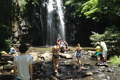 Imagen Private Tour: Tropical Rainforest and Waterfalls Day Trip from Cairns