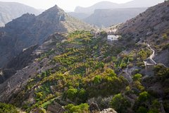 Excursions,Full-day excursions,Excursion to Jebel Akhdar