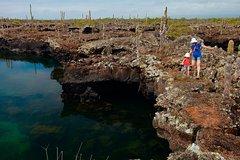 Imagen Excursión de medio día a Los Túneles, Cabo Rosa, en Isabela Galápagos