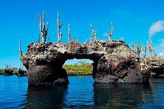 Excursions,Multi-day excursions,Excursion to Galápagos Islands 6 days