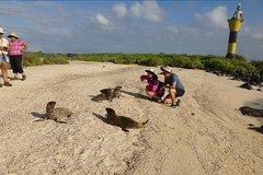 Imagen Española Galapagos Day Trip from San Cristobal Island