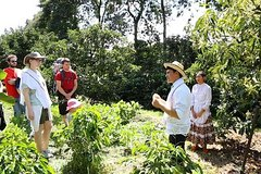 Imagen Full-Day Private Colombian Coffee Tour Filandia and Salento from Armenia