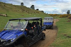 Imagen Off-Road 4WD Buggy Adventure from Rotorua