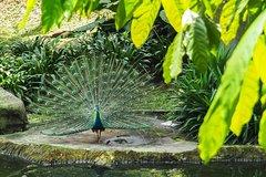 Imagen Parks & Gardens