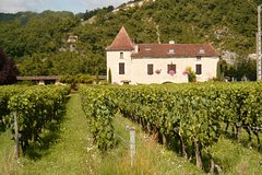 Cahors Guided Walking Tour