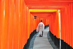 City tours,City tours,City tours,Excursions,Bus tours,Auto guided tours,Full-day excursions,Excursion to Kyoto