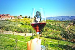 Chianti Wine Tasting tour from Florence or Siena with local driver guide