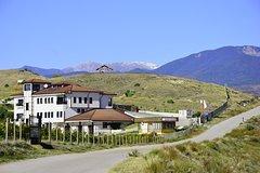 Imagen Melnik Wine Tour