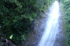 Hawaii Hawaii Manoa Waterfalls Run and Hike Tour 20544P7