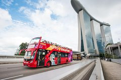 Ver la ciudad,Hop-On Hop-Off,Tour por Singapur