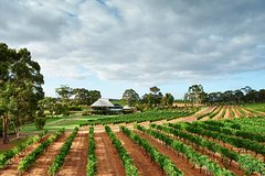 Imagen Vasse Felix Margaret River: Winery Tour and Private Wine Tasting