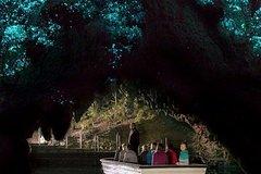 Imagen Waitomo Caves and Kiwi House