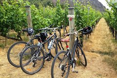 Imagen Half-Day Self-Guided Ride and Wine Bike Tour from Arrowtown