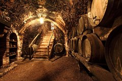 Chianciano Evo Oil and Montepulciano Wine Tour Fullday from Rome