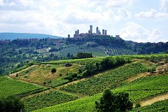 San Gimignano and Chianti Classico Wine and Food PRIVATE TOUR from Florence