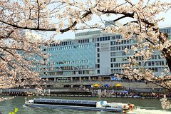 Ver la ciudad,Ver la ciudad,Ver la ciudad,Tours andando,Tour por Osaka,Crucero por el Río Osaka